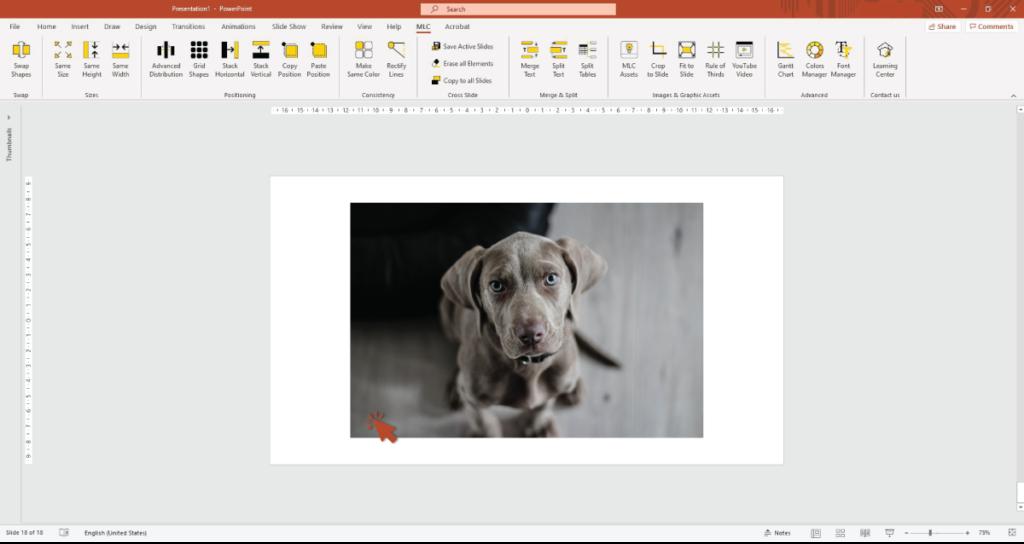 immagini per PowerPoint